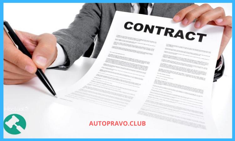 Что можно включить в контракт
